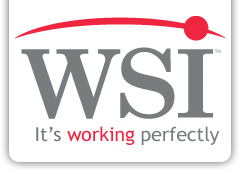 WSI Talent - It's working perfectly